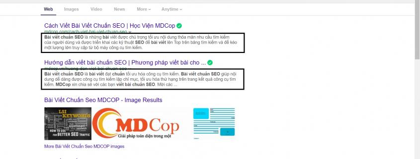 Meta description, những đoạn quảng cáo nhỏ thu hút sự chú ý độc giả